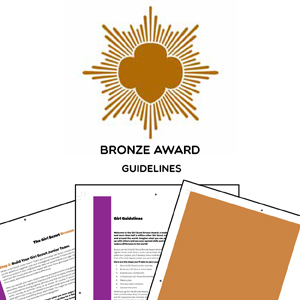bronze award Guidelines