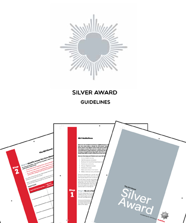 Silver Award Guidelines