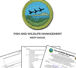 Fish and Wildlife Management Merit Badge