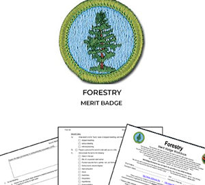 Forestry Merit Badge