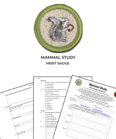 Mammal Study Merit Badge