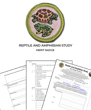 Reptile and Amphibian Study Merit Badge