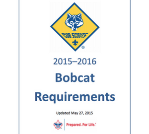 bobcat requirements