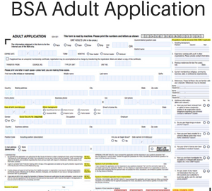 BSA Adult Application Fillable