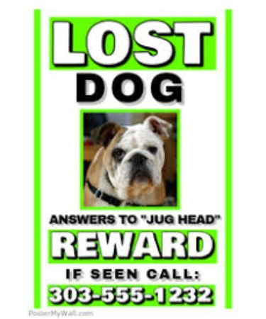 lost dog template pdf free download printable
